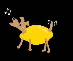 Lemon Dog sings!