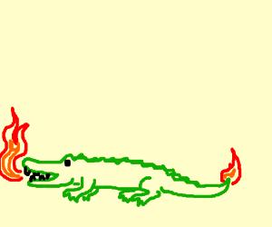 An alligator-like dragon
