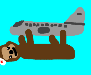 Sloth nurse holds on to plane