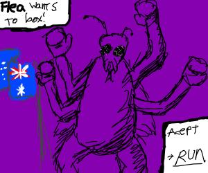Australlian flea wants to box you! What do?