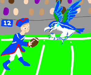 Patriots (from 1776) vs Seahawks (real birds)
