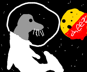 A cosmonaut seal visits the cheese wheel in space