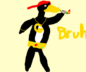 Bruh, that penguin is a G'