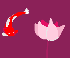 Tranquil koi and lotus