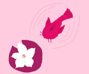 The Koi swam down to the lake flower