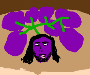 Conchita Wurst as a bunch of grapes