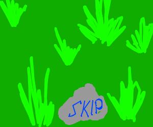 """""""SKIP"""" written on a rock"""