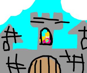 mario castle skech