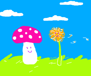 Mushroom and Dandelion,standing there together