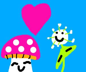 A Mushroom and a seeding dandylion in love