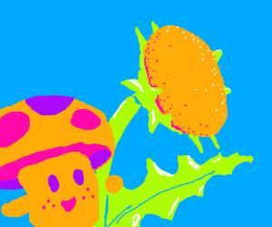 mushroom loves dandy lion