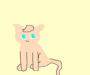 Jigglypuff cat