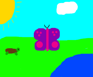 Giant Butterfly and Small Turtle