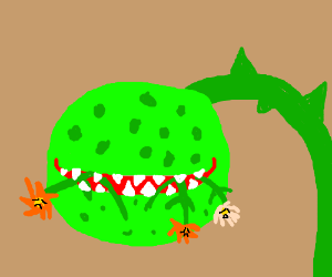 Cannibalistic plant