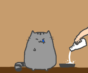 Cat weeps for joy as milk is poured into bowl.
