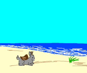 A wolpertinger on the beach