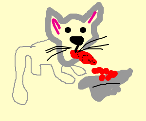 Good kitty. Lick the blood. Thats your dinner.
