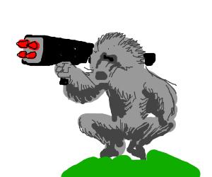 Rocket....Baboon