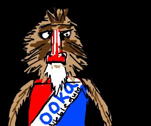 Bazooka baboon