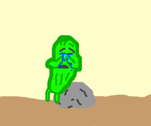 Pickle cries while sitting on rock