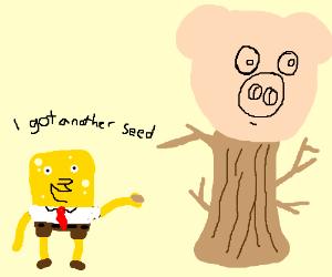 Spongebob holds a Pig Tree Seed