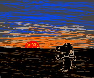 Black snoopy enjoys the sunset
