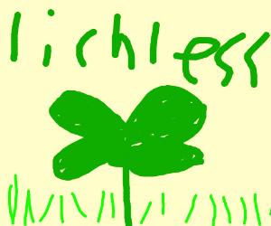 no lich clover