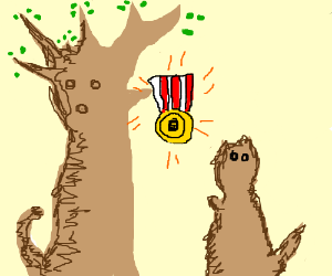 The beaver honors the pig tree