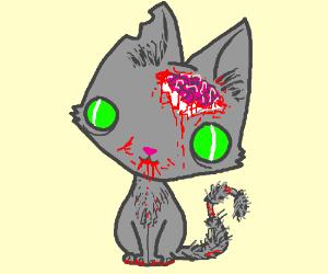 A cute zombie kitten