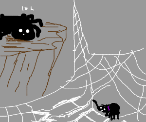 Spider doesn't share Charlotte's fate