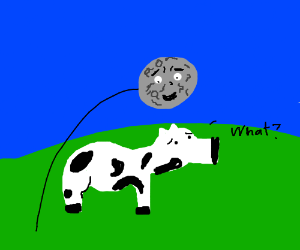 moon jumping over cow