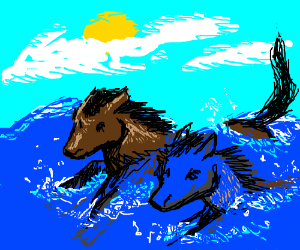 The 2 horse riders rode into the ocean