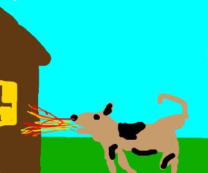 Arsonist dog
