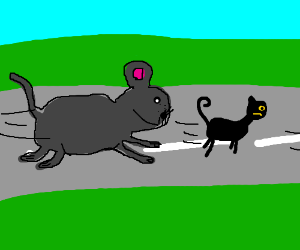 giant mouse chasing a cat