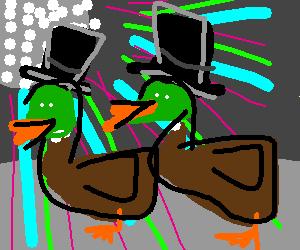 Ducks with hats dancing