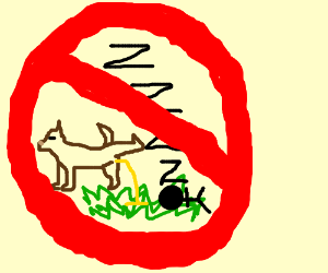 don't sleep on the grass where dogs pee