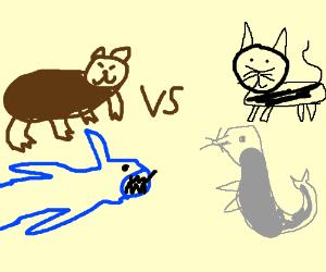 Sharkbear vs catseal