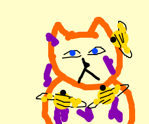 Bee and Jelly(covered)cat