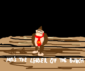 Donkey Kong! He's the leader of the bunch