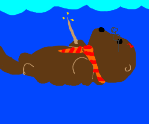 Harry Otter and the Deathly Shallows
