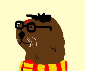 Harry otter :3