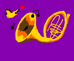 Finch loves French Horn