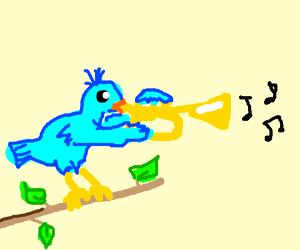 bird plays the trumpet