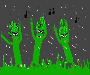 The asparagus people dance in the rain