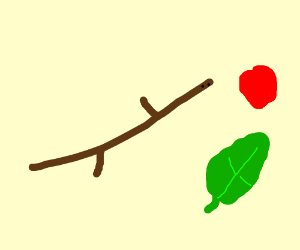 twig in love