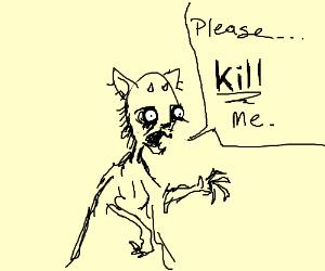 Demon cat lady wants peace
