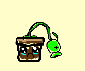 Pot is sad that the plant in it is dead.