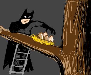 Batman is steeling bird eggs.