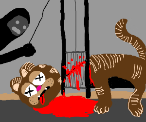 Brown cat is beheaded