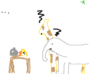 Two animals look at an animal head on a table